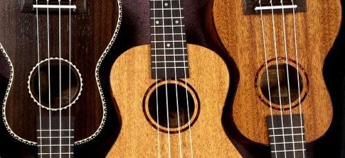 Hricane Ukulele, Konzert Ukulele