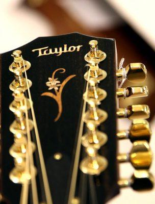 12 saitige Gitarre Test und Testsieger