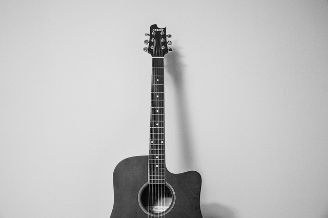 Donner Gitarre im Test